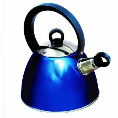 Sunncamp Nouveau Stainless Steel Whistling Kettle - Blue